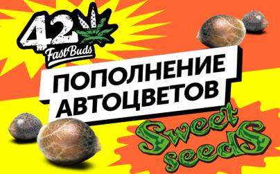 Пополнение автоцветов в RastaRasha: семена от FastBuds и Sweet Seeds